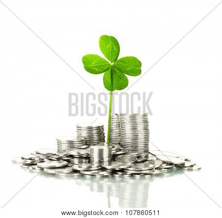 Clover leaf growing out of silver coins isolated on white