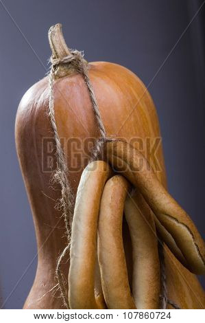 Gourd With Bunches Of Cracknels