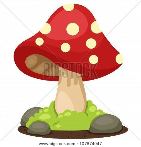 Illustrator of mushrooms landscape