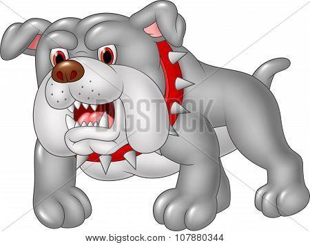 Cartoon angry bulldog isolated on white background