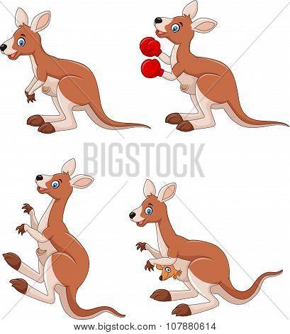 Cartoon kangaroo collection set isolated on white background