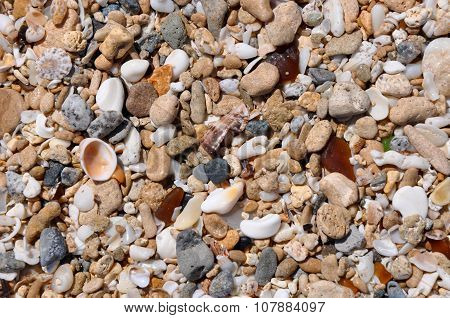 Beach Textures: Sand, Glass, Rock and Shell