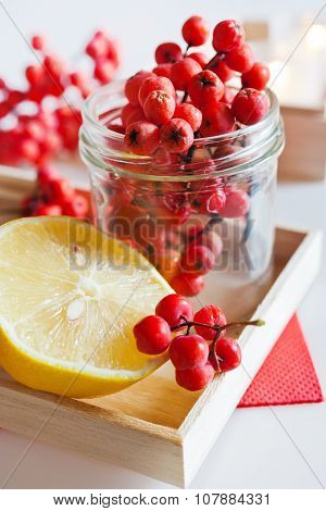 Sorbus Aucuparia / Red Rowan Berries With Lemon
