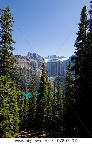 Larch valley and Moraine lake