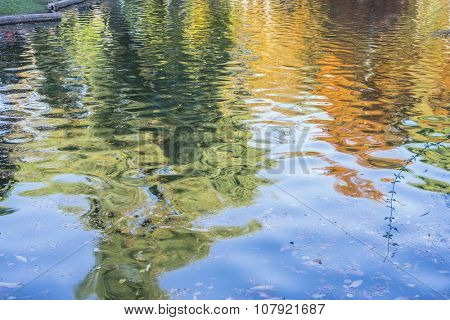 lake with reflections on water autumn