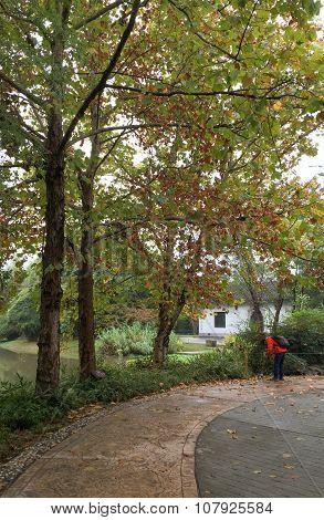 Japanese Garden In Autumn, Nara