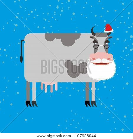 Cow Santa Claus. Farm Animal With Beard And Moustache. Christmas Cap. Funny Cattle For New Year.