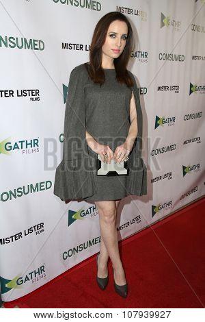 LOS ANGELES - NOV 11:  Zoe Lister-Jones at the
