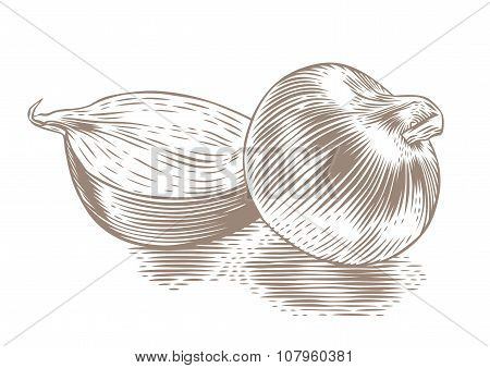 Whole And Half Onion
