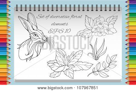 coloring page with isolated images of flowers, hare, leaves and