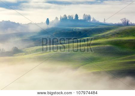 Magically Foggy Valley in the morning landscape, Tuscany, Italy, Europe