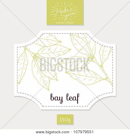 Product sticker with hand drawn bay leaves. Spicy herbs packaging design