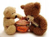 picture of teddy-bear  - two teddy bears opening honey - JPG