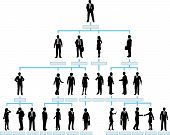 picture of hierarchy  - Organizational corporate hierarchy chart of a company of silhouette people - JPG