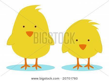 Little Chickens
