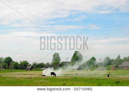 A Landscape Of Rural