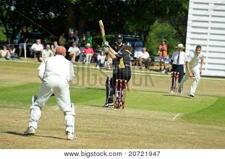 Pro-Am Cricket