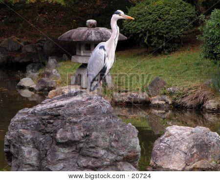 Bird In Stone Garden