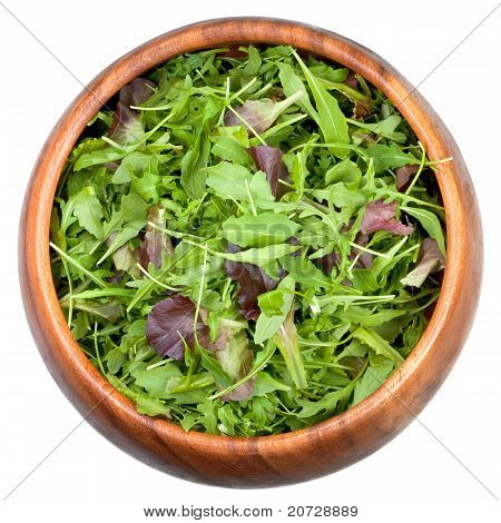 Fresh Salad Mix