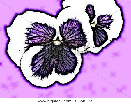 Abstract Isolated Patio Pansies