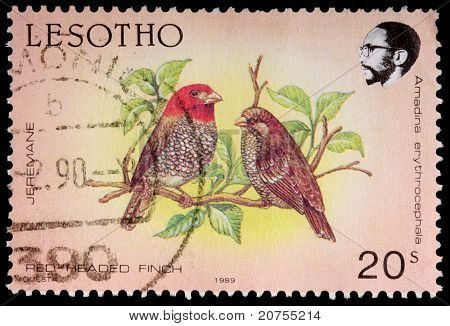 A 20-sente Stamp Printed In The Kingdom Of Lesotho