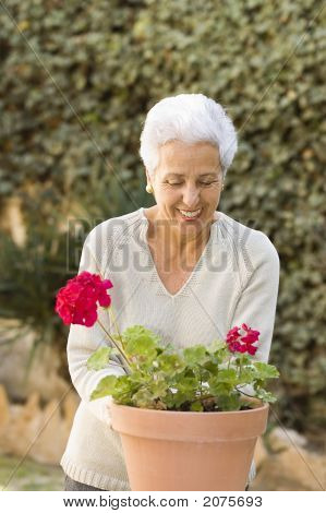 Senior Lady Pruning Her Plants