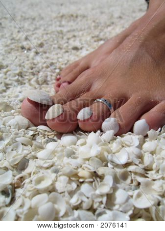 Shells On Toes