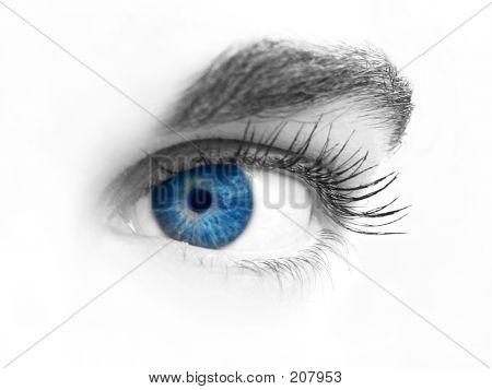 Nahaufnahme des Auges