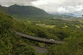 picture of afforestation  - view of Eastern Oahu as seen from the Pali lookout - JPG