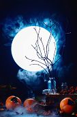 Tree Branches Silhouette In Full Moon. Spooky Halloween Concept With Autumn Fruits, Berries, Magical poster