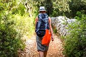 Woman Hiking On Country Footpath With Rock Fence And Woods. poster