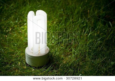 energy saving lamp on the green grass