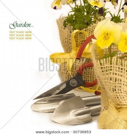shovels with spring viola flowers and place for yout text