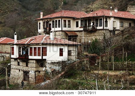 Old Village Houses