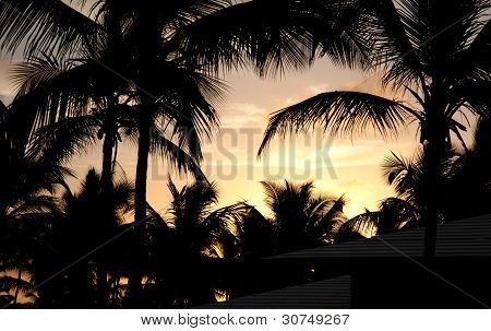 Punta Cana Sunset 2