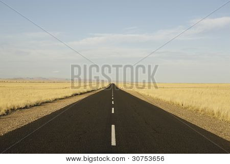 road in central perspective