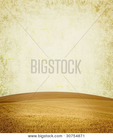 paper texture. yellow field in grunge and retro style