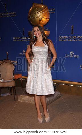 LOS ANGELES - DEC 14:  Sofia Vergara annoucing the Golden Globe Awards 2012 Nominations  on December 14, 2011 in Beverly Hills, CA.