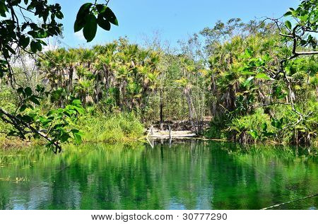 Crystal Cenote, Tulum, Mexico