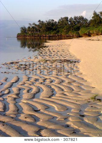 Tides Out, Tropical Beach