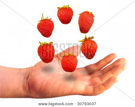 Six Berries Over A Palm On A White Background