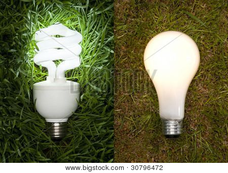 Lit Energy Savings And Incandescent Light Bulb On Grass