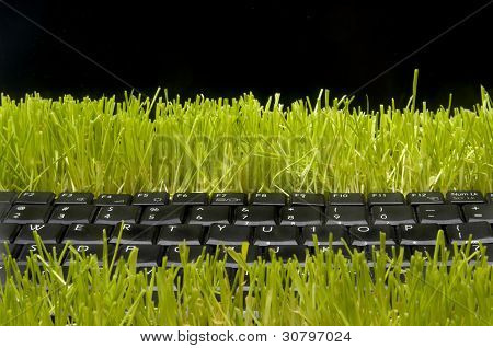 Laptop Computer Made Out Of Grass