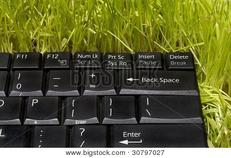 Computer Keyboard On Grass