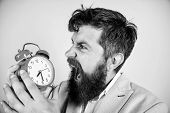 Time Management Skills. How Much Time Till Deadline. Time To Work. Man Bearded Aggressive Businessma poster
