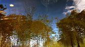Lonely Yellow Maple Leaf Is Floating In Lake With Blurry Reflection Of Fall Landscape In Smooth Wavy poster