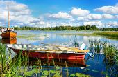 stock photo of lax  - A beautiful lake in Sweden in a summer sunny day - JPG