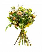 Bunch Of Faded And Dry Flowers On White Background poster