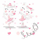 A Pair Of Cute White Ballerina Cats In Pink Ballet Tutu And Pointe. poster