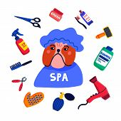 Pet Grooming Concept. Dog Spa. Bulldog Shower Cap With Grooming Elements Comb, Shampoo, Hand Dryer E poster